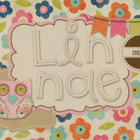 Intro page for Linnae's section
