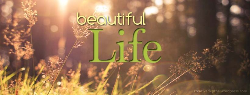 Beautiful life banner