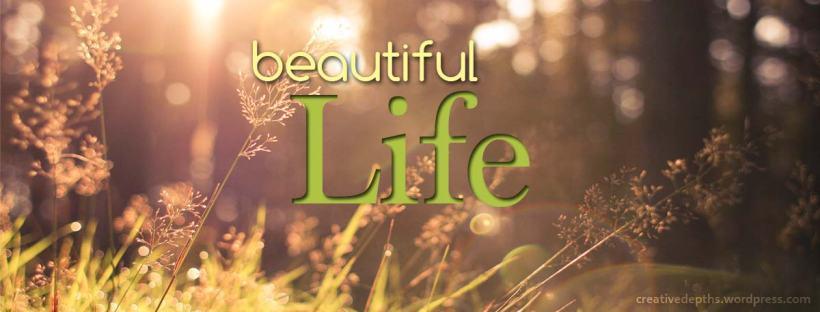 Beautiful life banner